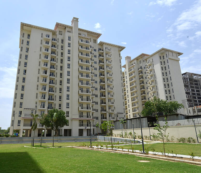 Flats Apartments for Rent in Sector 65 emerald hills